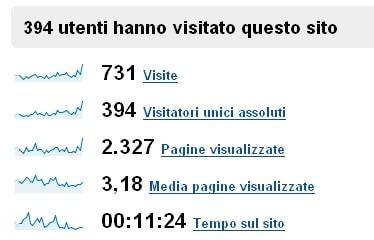 Google Analytics Febbraio 2008 Visitatori